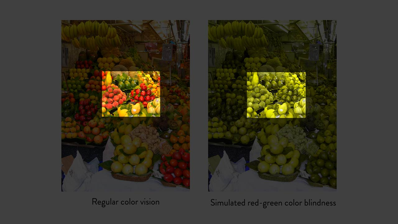 Understanding the Role of Color in Accessibility